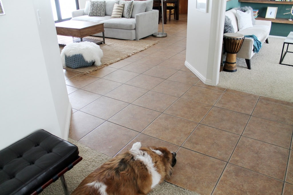 Tile and Carpet Before