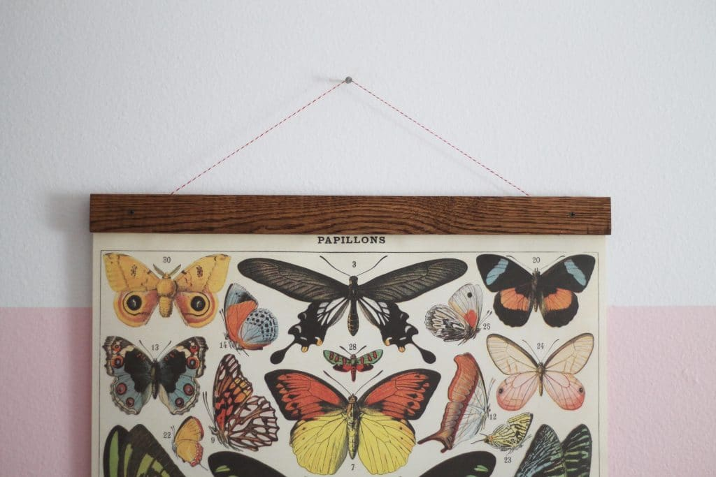 DIY Vintage Poster Frame for Greta\'s Butterflies - Chris Loves Julia