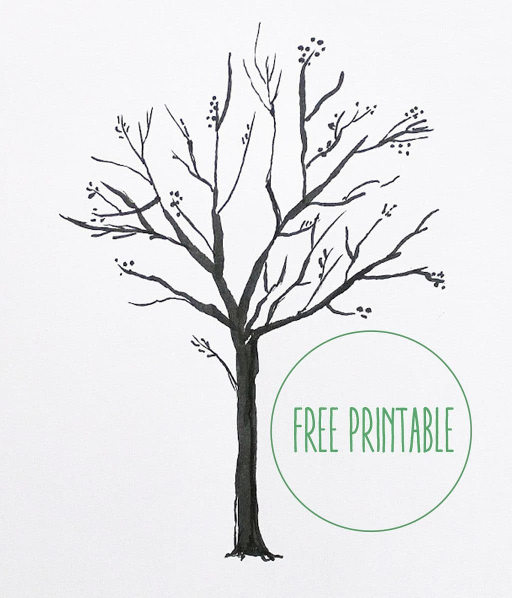 picture regarding Free Printable Tree known as No cost Printable! Blank Relatives Tree - Chris Enjoys Julia