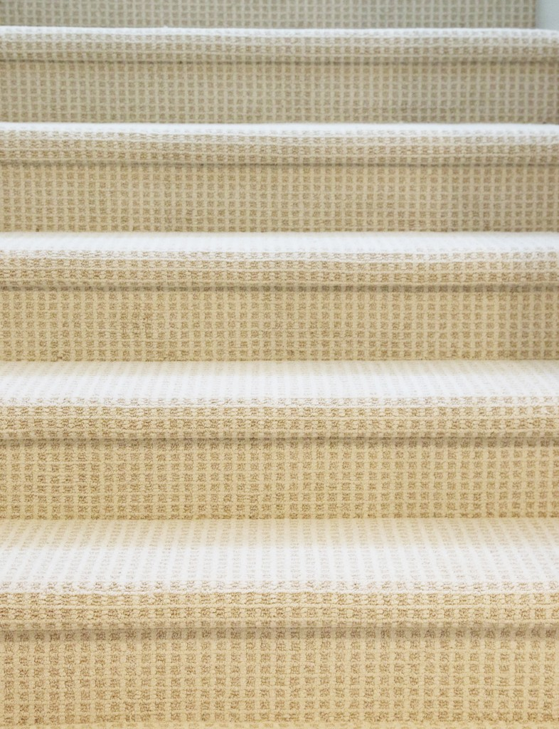 Tips For Choosing Wall-to-Wall Carpet in a Modern Setting