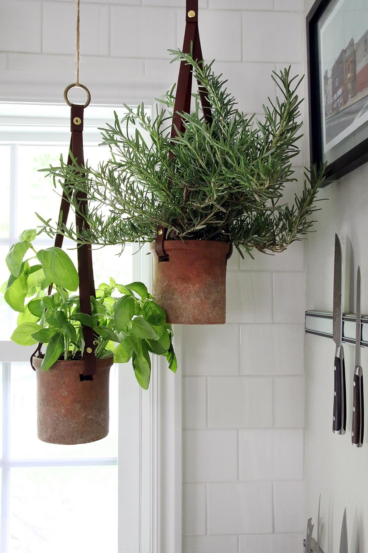 hanging herbs in kitchen