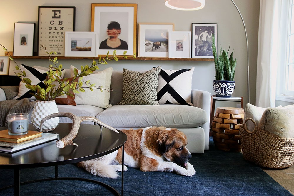 5 big area rugs for cheap and the one we chose for the living room